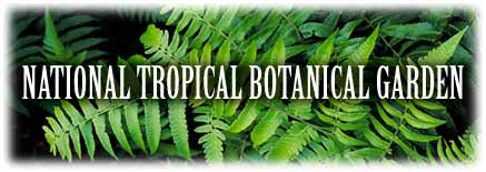 National Tropical